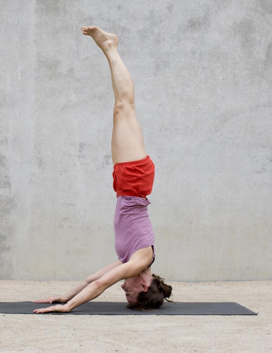 Yogalehrer Ausbildung Freiburg